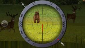 deerhunter15
