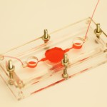 Google Glass works with Organs-on-Chips