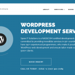 A List Of Top WordPress Development Service Providers in 2016