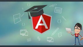 Why Should Web Developer Learm Angu_lar JS