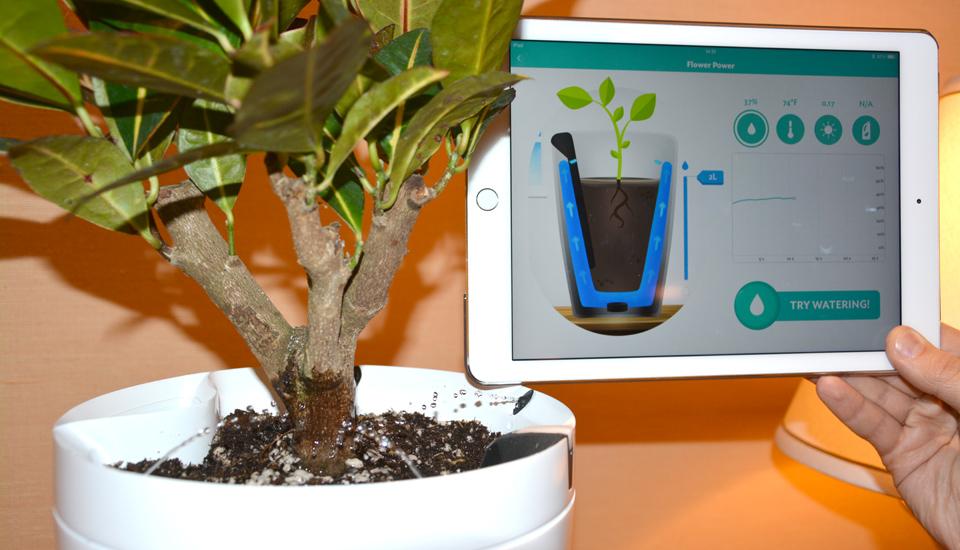 h2o-smart-pot-1