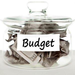 Budget-Savings