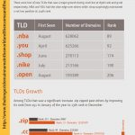 Some important things you probably didn't know about WWW, Domain, and Hosting [Infographic]