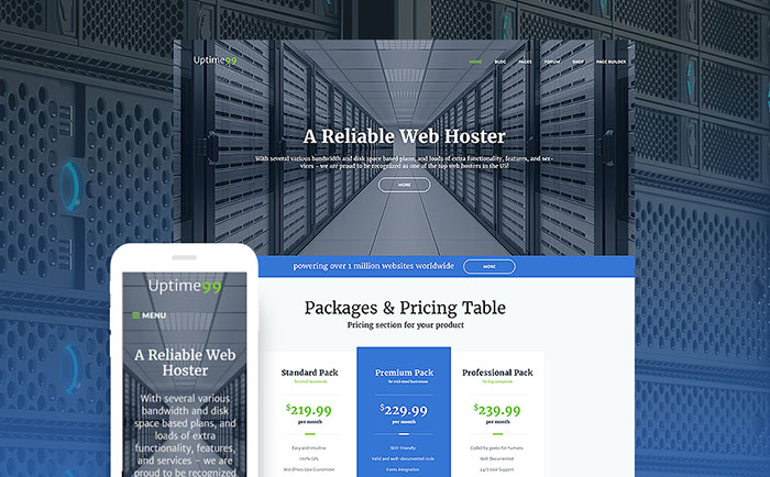 Hosting Services WP Theme