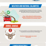 Benefits of Comprehensive Car Insurance [Infographic]
