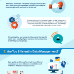 Should You Outsource Your Data Entry? [Infographic]
