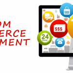 Custom vs Readymade Script Based Online Shopping Website Development
