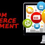 Custom vs Readymade Script Based Online Shopping Website Development