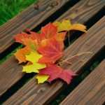 Fall Fanatic: 3 Outdoor Party Ideas to Enjoy the End of the Season