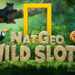 Mobile Games Developer Murka Co-Founded by Max Polyakov Launched Nat Geo WILD Slots to Bring Environmental Issues Awareness