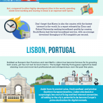 Top Cities for Working Remotely in 2018 [Infographic]