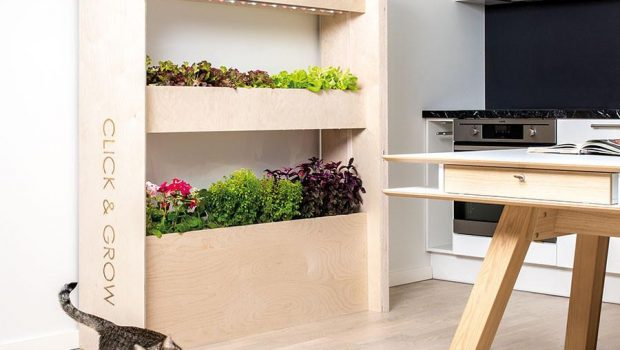 Check out this type of gadget for indoor gardening for Indoor gardening gadgets