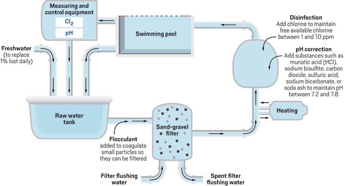 5 Great Tips For Proper Swimming Pool Maintenance Techno Faq