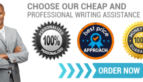 Image result for professional writing service