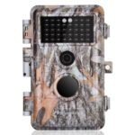 What Are Trail Game Cameras And How Are They Used?