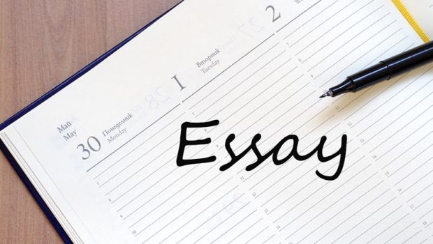 Custom essay service for children