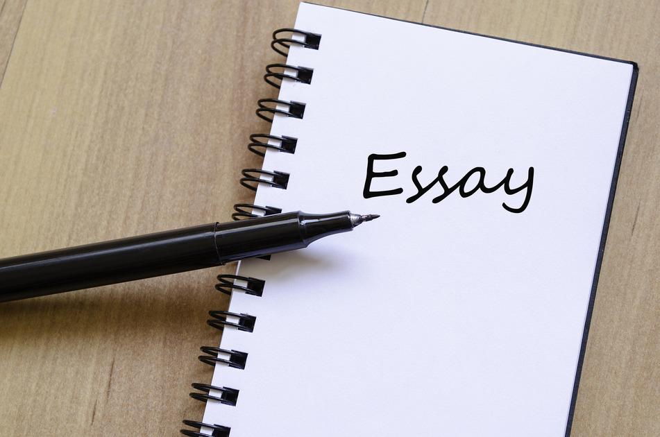 Essay writing service price