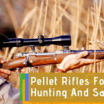 Choosing Pellet Rifles for Hunting and Self-Defense