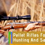 Choosing Pellet Rifles for Hunting and Self-Defense