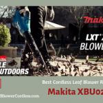 Makita XBU02PT1 Electric Leaf Blower Review
