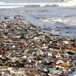 Plastic Pollution Its Types, Sources, Effects