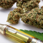 What Is the Difference Between CBD Flower And Oil?