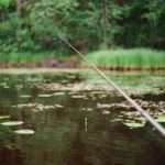 Your Ultimate Guide to Finding a Perfect Fishing Spot Using a Fish Finder