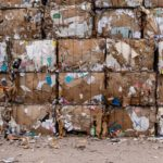 What Should You Know About Waste Consulting Before Hiring an Expert