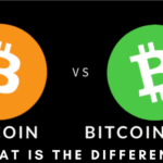 Bitcoin Vs Bitcoin Cash- What Is The Difference?