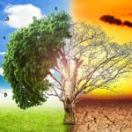 How normal weather is being affected by global warming?