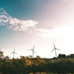 How to incorporate Sustainability in your Business
